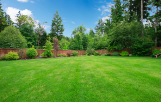 Large green lawn with wood fence, and large trees surrounding